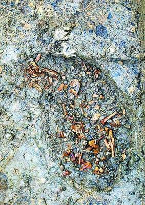 河南濮阳发现东周卫国都城 城下可能还有城(图