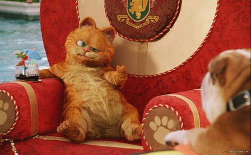 电影《加菲猫2之双猫记》精彩剧照欣赏-9