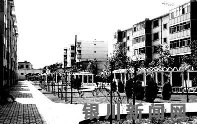 1 居民笑说拆迁前后   6月5日,记者走进永宁县建设小区,不少居民在
