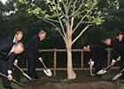 上合组织成员国元首共植纪念树