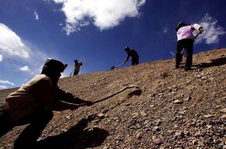 图文:西藏安多修建青藏铁路的工地上
