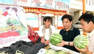 安徽阜阳就西瓜被注入艾滋病血液传言公开辟谣