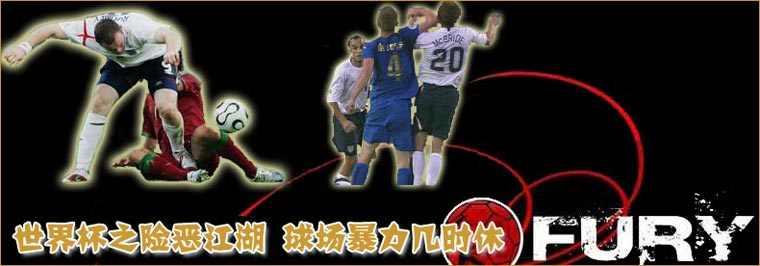 06德国世界杯,球场暴力