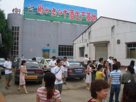 志愿者参观老白干酒厂 搜狐汽车环保志愿者相聚衡水湖共谋高清图片