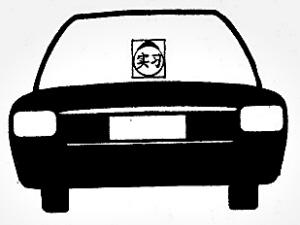 在实习期内驾车须随车粘贴或者悬挂实习标志,是确保实习期新高清图片