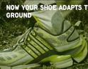 健身运动鞋的选择