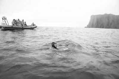 王刚义挪威北极海域游泳58分钟 创世界纪录(图)