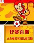 2004亚洲杯官方站
