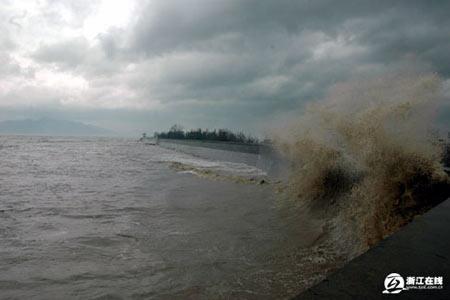组图:台风桑美引起大浪 龙港镇领导在东塘海堤