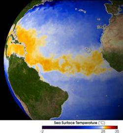 飓风是如何形成的 哪些区域容易形成飓风?(图)