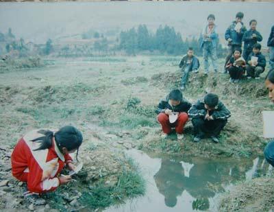 32.中国中小学绿色教育行动(图)