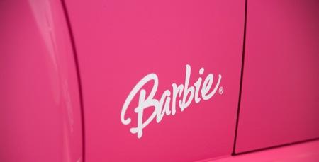 甲壳虫 Beetle Barbie(图)