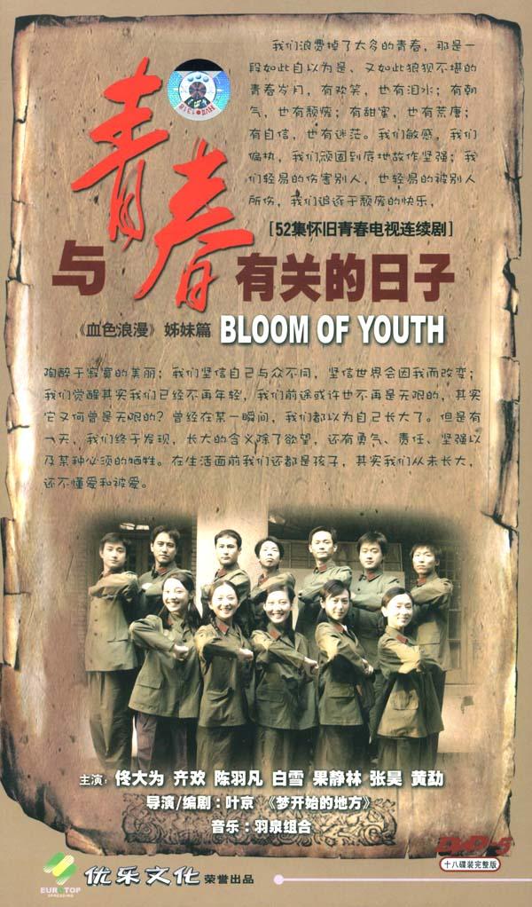《与青春有关的日子》精彩海报1