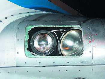 南航飞机2000米高空与飞鸟相撞 着陆灯罩被击碎
