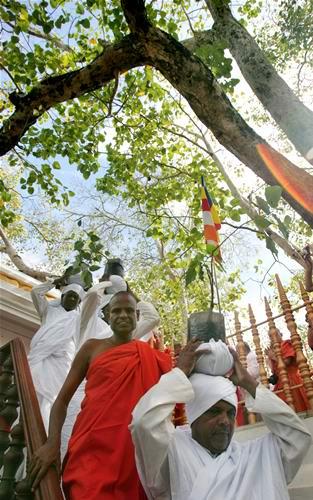 佛门千年盛典