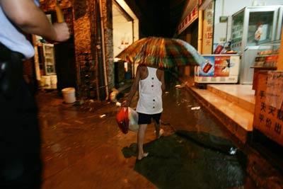 伤痕累累 雨夜流浪街头图片