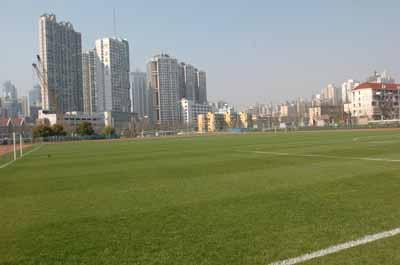 2008北京奥运会上海分赛场--上海体育场