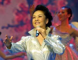 出席河南十运会开幕式晚会明星共纳税31.6万元