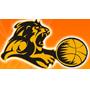 2007中国篮球发展高峰论坛动态