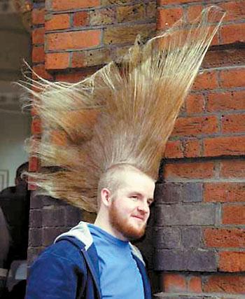 (如图),成为世界上头发最高的人.-最高的头发