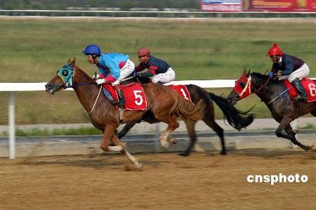 中国竞猜型赛马彩票有望2008年前展开试点(图)