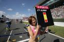 图文:日本大奖赛美女车模广角镜 红肥绿瘦9