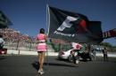图文:日本大奖赛美女车模广角镜 红肥绿瘦15