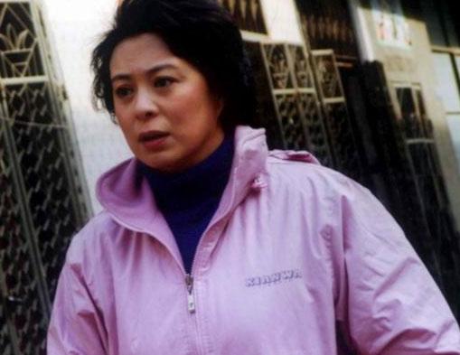 第23届金鹰奖最佳女演员提名:刘佳