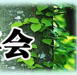 环保,NGO,年会