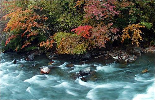 其他景观:   米亚罗风景区所在地四川理县,境内山峦起伏,峡谷