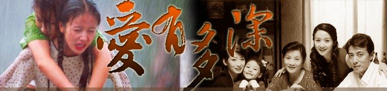 三十四集电视连续剧《爱有多深》