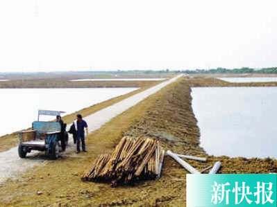 广州番禺区原副区长廖昌被控前后受贿近80万元