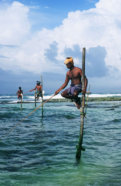 斯里兰卡 红茶 宝石和沙滩[组图]
