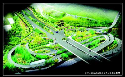 杨树景观平面手绘