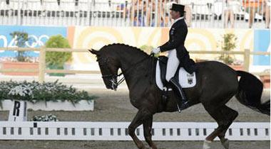 08奥运马术志愿者今起招募 首批志愿者将成骨干