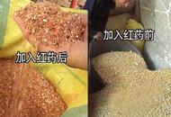 广州市场仍售红心鸭蛋 质检总局要求严查