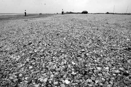 地震专家大胆猜想:大禹治水缘于陨石雨事件