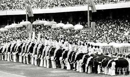 图文:1982年新德里亚运会开幕式 大象表演