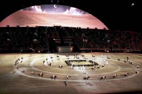 图文:第15届多哈亚运会开幕式 赛马绕场奔腾