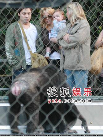 布兰妮独自庆25岁生日 带儿子游动物园(组图)