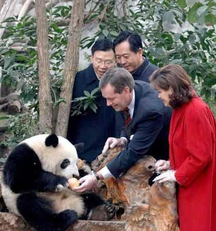 美国卫生与公共事务部长参观成都熊猫基地