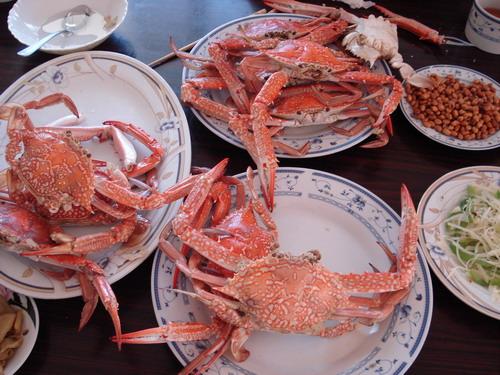 韩乔生侃亚运:禁食丑陋动物 多哈海鲜物美价廉