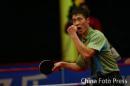 图文:世界乒球总冠军赛男子决赛 王励勤欢呼