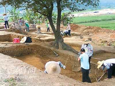 广东发现4千年前稻谷20粒 填补多项空白(图)