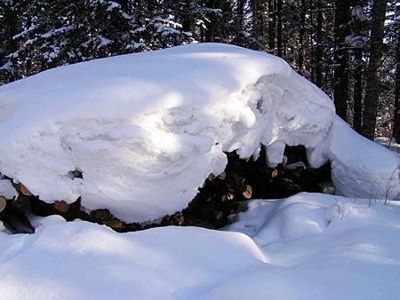 去看真正的学--雪乡精彩图片