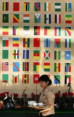 2006年中非关系:中非应背靠背反击西方谬论(图)