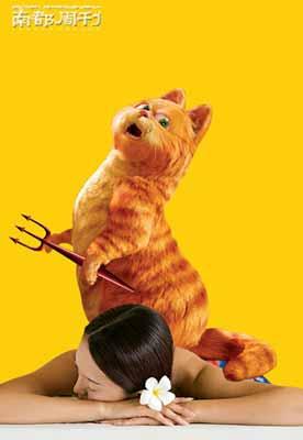 猫虐人照片惊现网络 网络万民追查爱动物好女人