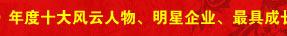 搜狐IT,大话2006,特别策划,盘点