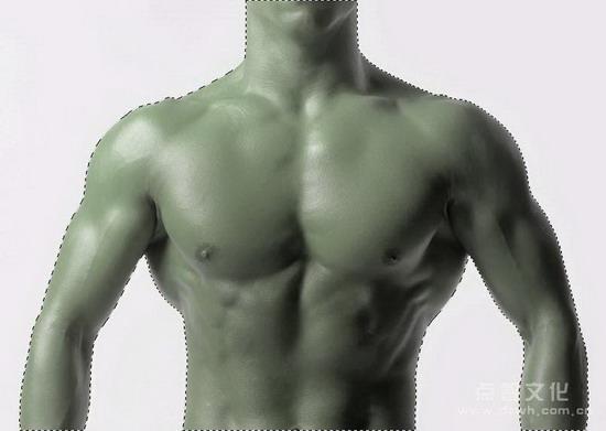 《Photoshop CS质感传奇》:将人皮处理成蛇皮