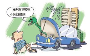 它爬进汽车只是为了避雨 新加坡动物专家